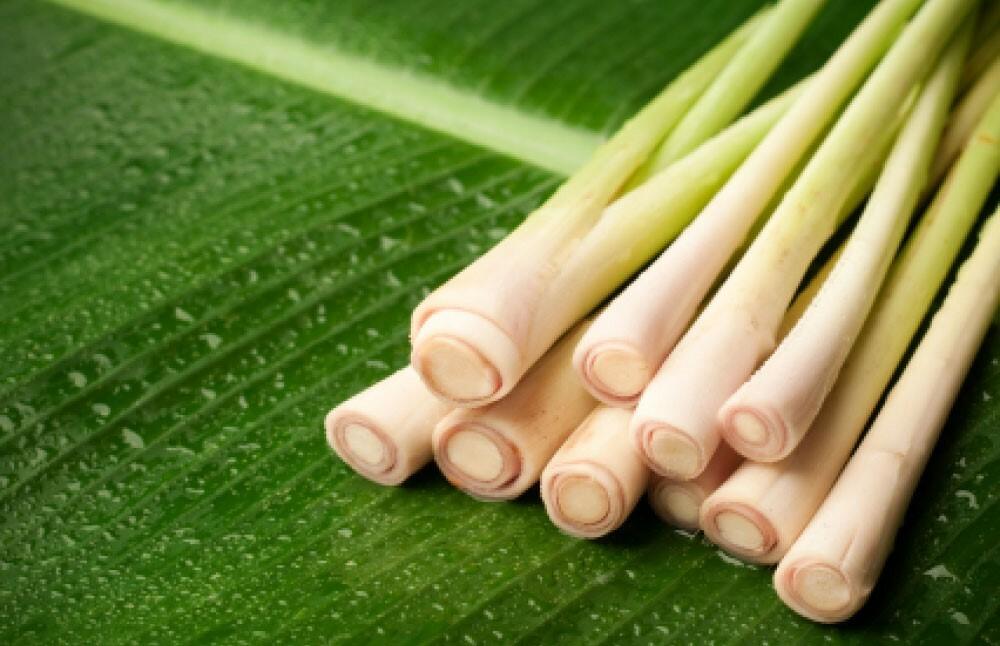 Cách xông hơi trị mụn bằng thảo dược hiệu quả đơn giản - Điều trị mụn Dr Huệ - Hình 3