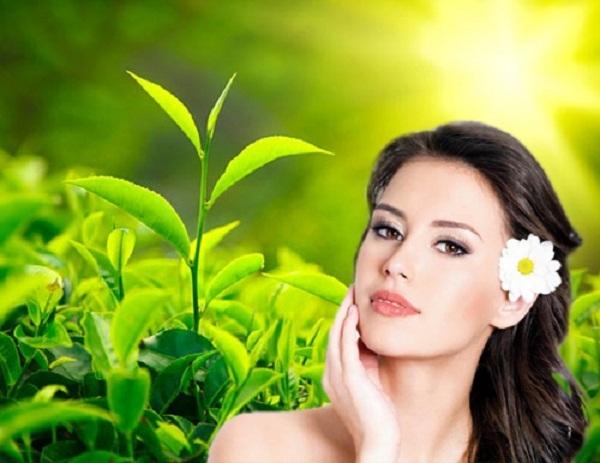 Điều trị mụn hiệu quả nhất với trà xanh - Điều trị mụn - Hình 2