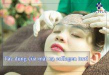 tác dụng của mặt nạ collagen tươi